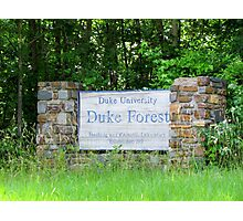 Duke Forest Sign Photographic Print