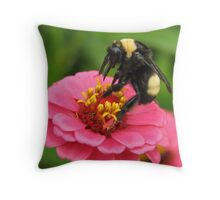 Bumble Bee on Red Zinnia Throw Pillow