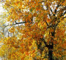 November Leaves Sticker
