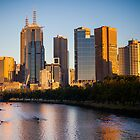 Rowers on the Yarra River as the sun rises on Melbourne city by jamjarphotos