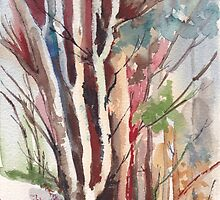 The forest - beautiful and great by Maree Clarkson