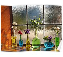 Little Green Bottles Sitting in the Window Poster