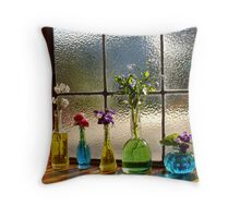 Little Green Bottles Sitting in the Window Throw Pillow