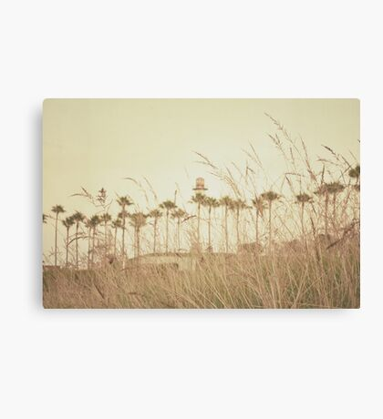 Beyond the Brush Canvas Print