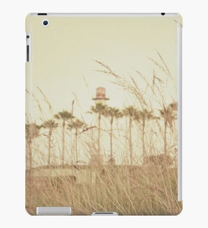 Beyond the Brush iPad Case/Skin