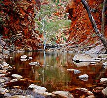 Ellery Waterhole NT by D-GaP