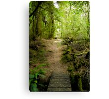 Philosopher Falls Track Canvas Print