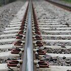 Rail by UpNorthPhoto