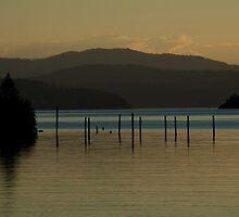 Coeur d'Alene lake at dusk (3) by Nick Dale