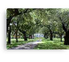 Plantation Entrance Canvas Print