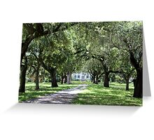 Plantation Entrance Greeting Card