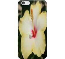 Yellow Hibiscus With Garden Background iPhone Case/Skin