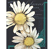 Daisy Chalkboard 1 Photographic Print