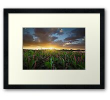 In Deep Framed Print