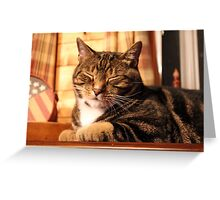 So Sleepy! Greeting Card