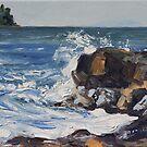 End of Storm Georgina Point Mayne Island  by TerrillWelch