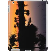 Intense Reflections iPad Case/Skin