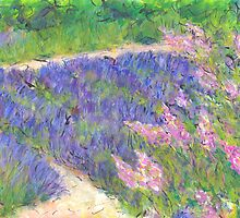 A Little Lavender, Provence by JackieSherwood