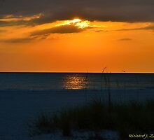 Beachscape by Zzenco