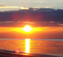 Brilliant Sunrise by Zzenco