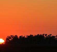 Brilliant Sunset by Zzenco