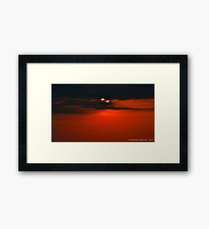 Flying Into The Sunset Framed Print