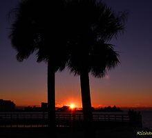 Sunset Between The Palms by Zzenco