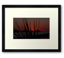 Sunset Thorugh The Palm Framed Print