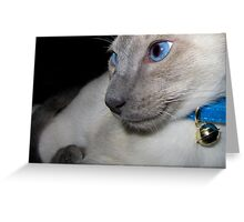 Siamese! Greeting Card