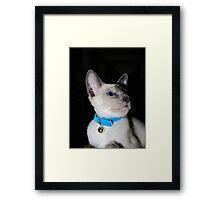Murphy! Framed Print