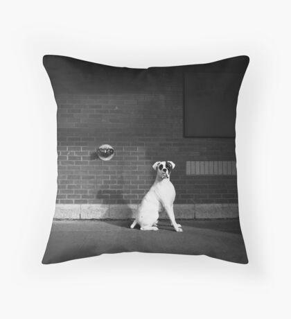 Alert Dog Throw Pillow