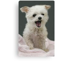 Laughter!  Canvas Print