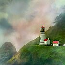 Heceta Head Lighthouse Florence Oregon by Diane Schuster