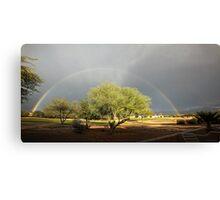 The Rain and The Rainbow Canvas Print