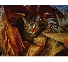 Brown Paper Wrapper Photographic Print