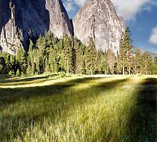 Cathedral Rocks in Yosemite Valley by Chris Frost Photography