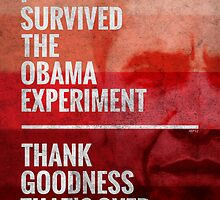 The Obama Experiment by morningdance