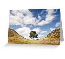 Sycamore Gap, Hadrian's Wall Greeting Card