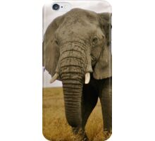 Serengeti Elephant iPhone Case/Skin