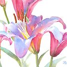 Watercolor Lily Close-up by Pat Yager