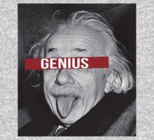 Einstein the Genius by glacierwaves
