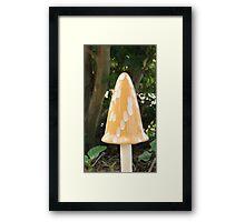 Yellow Mushroom Framed Print