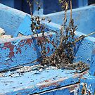Boat Graveyard by clizzio