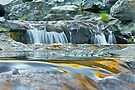 Golden Rapids by John Butler