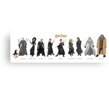 Harry Potter Project Metal Print