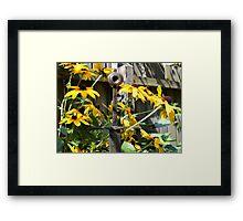 Sword Among Flowers Framed Print