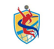 Volleyball Player Spiking Ball Shield by patrimonio