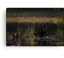 The Peaceful Place Canvas Print