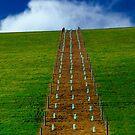 """Hillside"" by Phil Thomson IPA"