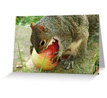 I'll wrestle you to the ground if I have to !  Greeting Card